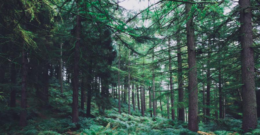 Prispejte k skvalitneniu životného prostredia